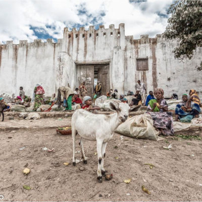 Harar, Etiopia – Canon 6d ef 17-40 f4 – 17mm  1/400sec F5.6 ISO 100
