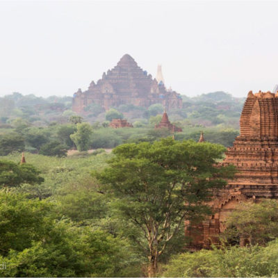 Piana di Bagan: non si comprende il significato e la bellezza di Bagan fino a quando non si sale un tempio (rigorosamente scalzi: né scarpe né calzini). La vista a perdita d'occhio dei templi che spuntano tra gli alberi rende increduli