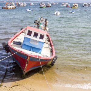 Barca nel Porto di Arosa