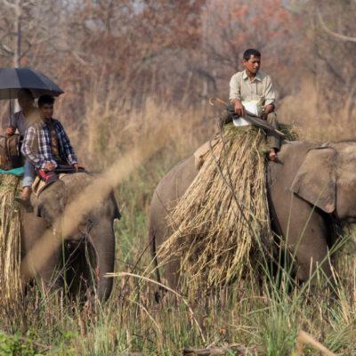 viaggio fotografico Nepal Chitwan