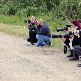 Andar per risaie: una gita fotografica nel vercellese