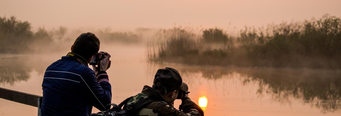 Sulle sponde del Mincio – workshop di fotografia naturalistica