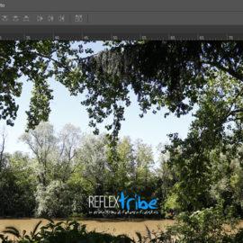 Corso di postproduzione con Adobe Photoshop – in diretta on-line dal 17 febbraio 2021